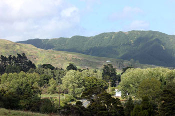 Whangaripo Valley, Wellsford