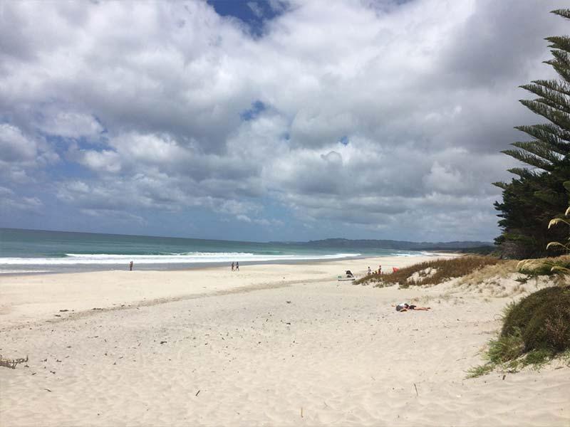 Te Arai beach